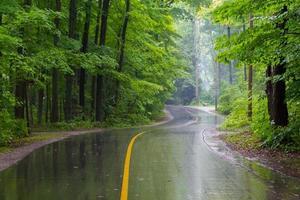 landelijke weg op een regenachtige dag