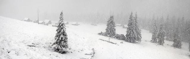 alpine is het klimaat foto