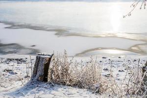 boomstronk op een achtergrond van een bevroren rivier