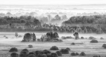 mistig veld in de ochtend - bw-versie. foto