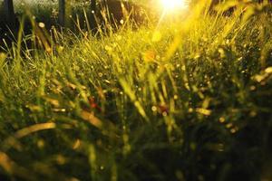 zonsopgang in mooi steegje