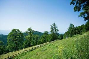 lente landschap in berg.