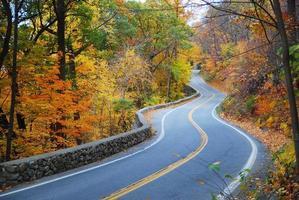 kronkelende herfstweg met kleurrijk gebladerte foto
