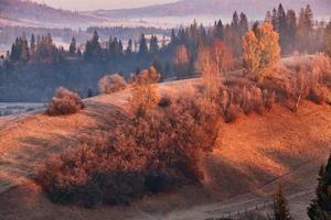 november ochtend in de Karpaten
