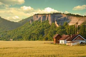 boerderij foto