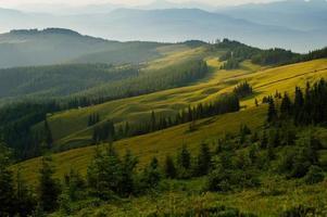 Karpatische bergen