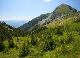 bezoekers bergen foto