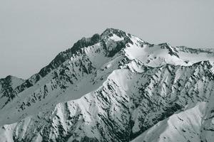 top van de berg foto