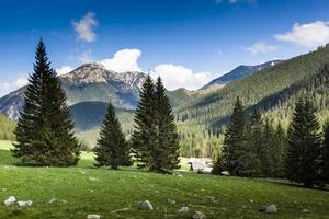 chocholowska-vallei, tatra-gebergte, polen foto
