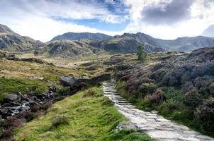 pad in de bergen foto