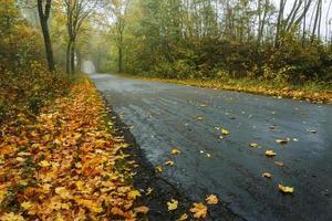 bergweg in de herfst