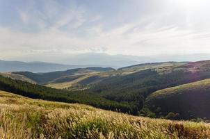 uitzicht op het uitgestrekte plateau. geelgroene weide foto
