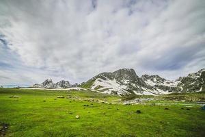 groen veld en stroom met sneeuwberg foto