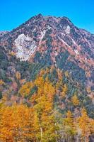 herfst kamikochi foto