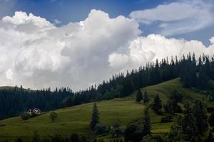 Karpaten mounts