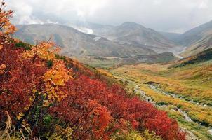 herfstkleuren, tateyama, japan