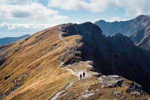 placlive piek bij Tatra-gebergte foto