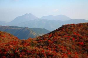 herfstbladeren van de berg foto