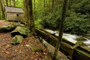 Great Smoky Mountains National Park foto