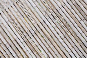 bamboe hek achtergrond foto