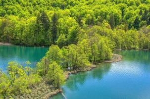 vijvers bij de meren van Plitvice foto