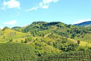 landschap van laagberg, phetchabun, thailand foto