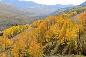 gouden vallei