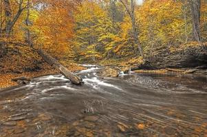 bladeren vallen in de bergen foto