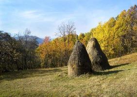 hooi op een bergveld foto
