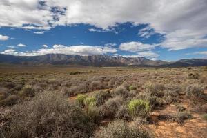 bergen vlakte vegetatie blauwe lucht