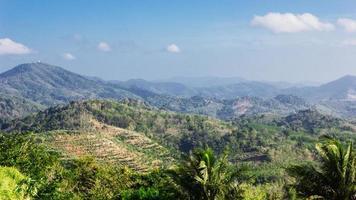 tropisch landschap in phuket thailand foto