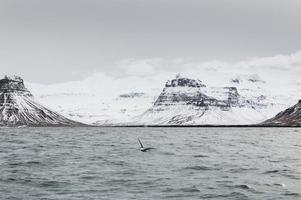 de ijslandse bergen en het meer