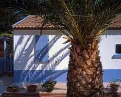 vakantieparadijs huis foto