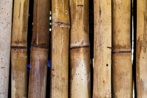 fotografie van natuurlijke bambu textuur foto