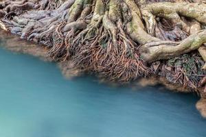 verbazingwekkend kristalhelder smaragdgroen kanaal met mangrovebos foto