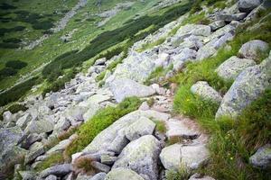 lage Tatra-bergen, Slowakije foto