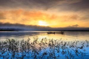 mimosa-bomen op het meer bij zonsondergang foto