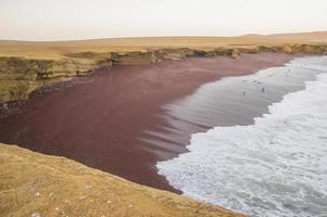rood strand, paracas-reservaat, peru.