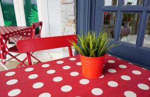 groene planten op rode pot foto