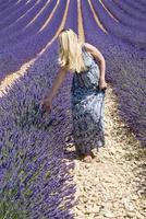 vrouw op bloemengebied van lavendel