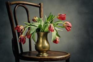verdorde tulpen