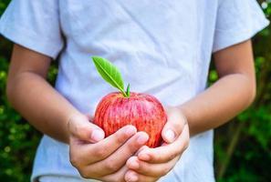 vers appelfruit in de hand van een kind