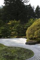 traditionele Japanse tuin foto