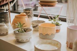 vetplanten in keramische potten