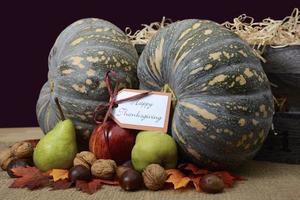 happy thanksgiving pompoen in rustieke omgeving.