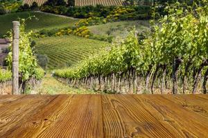 Toscaanse wijngaard met stokken als achtergrond.