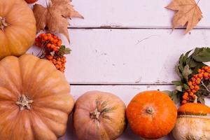 herfst stilleven. pompoenen voor halloween en thanksgiving day. foto