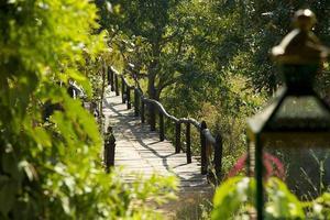 rustige houten plank pad over vijver met lantaarn op voorgrond foto