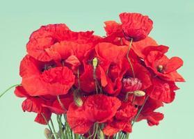 bos van rode papaver bloemen