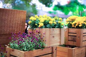 bloemen in een krat